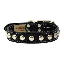 Auburn Leathercrafters Silver Studded Collar
