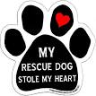Imagine This Car Magnet, Dog Pawprint, Car Magnet
