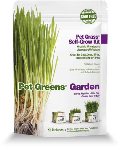Pet Greens Garden Self-Grow Wheatgrass Kit