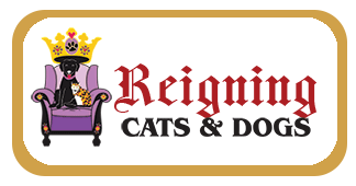Reigning Cats & Dogs