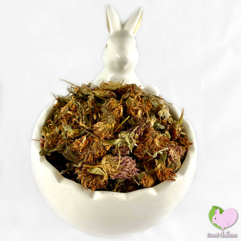 Red Clover, whole, dried and organic for rabbits, guinea pigs, chinchillas, hamsters, degus and gerbils