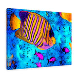"Tropical Fish Canvas Artwork 24"" x 18"" Gallery Wrapped Giclée Print"