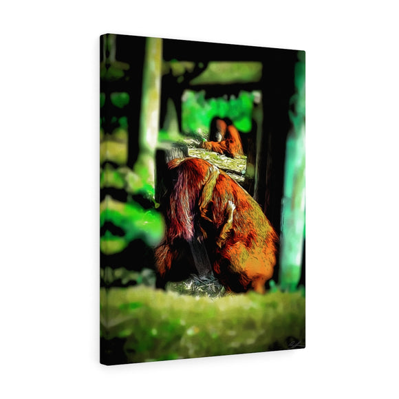 Baby Orangutan Canvas Wall Art 18