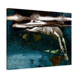 "White Alligator Canvas Artwork 24"" x 18"" Gallery Wrapped Giclée Print"