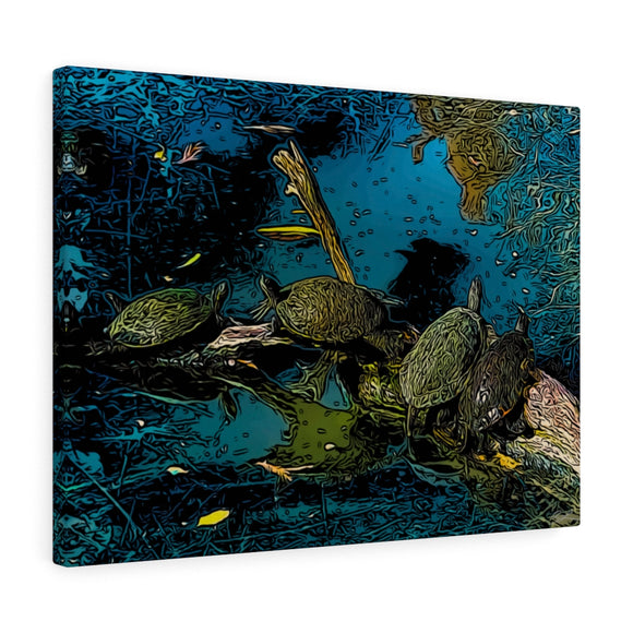 Bayou Turtles Canvas Wall Art 24