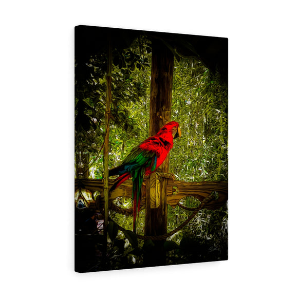 Red Parrot Canvas Artwork 18