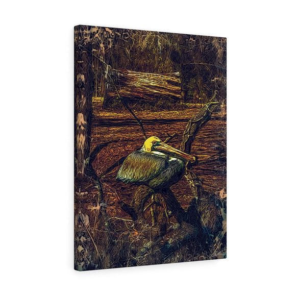 Bayou Pelican Canvas Wall Art 18