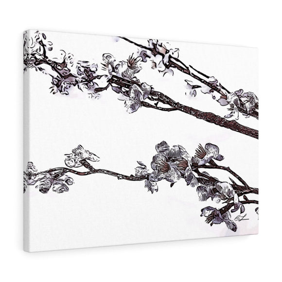 Cherry Blossom Canvas Giclée 24