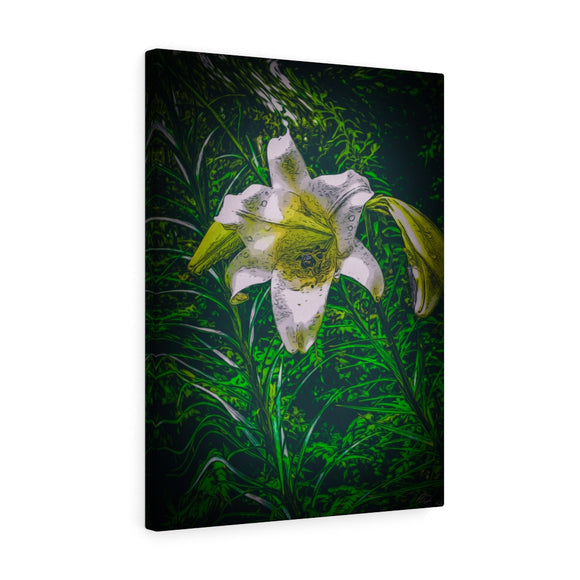 Easter Lily Canvas Giclée 18