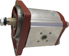 Load image into Gallery viewer, Gear Pump Salami 2PE22.5D-B25B1, Group 2, German std, 22.5 cc, CW