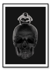 Scull Balance - poster
