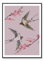 Swallows - poster
