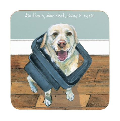 Coaster featuring golden labrador with caption ' Bin there, done that, doing it again'