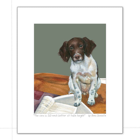 Art print featuring liver and white spaniel