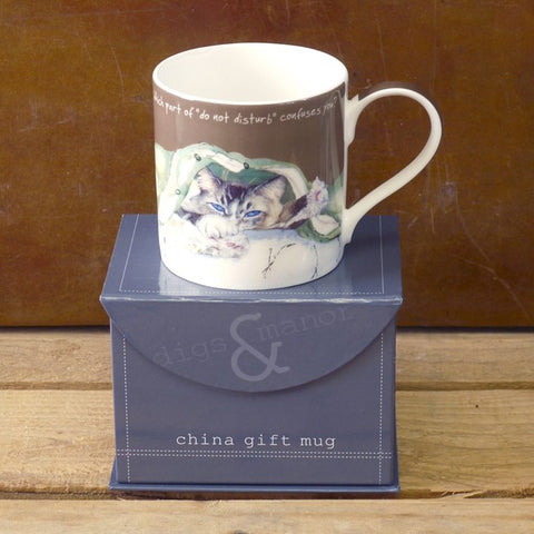 Tabby cat mug on gift box. Caption of 'What part of do not disturb confuses you?'