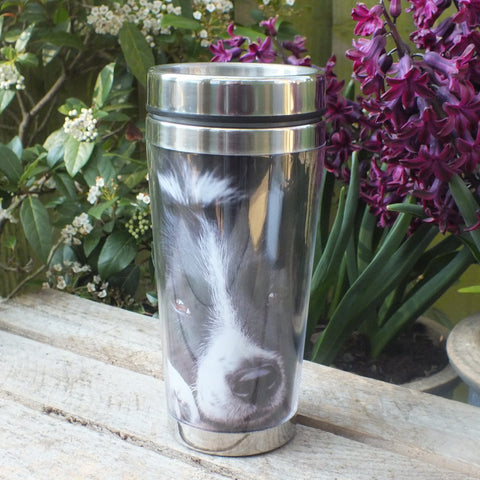 thermal mug with black and white collie. Sat on wooden bench in front of purple flowers