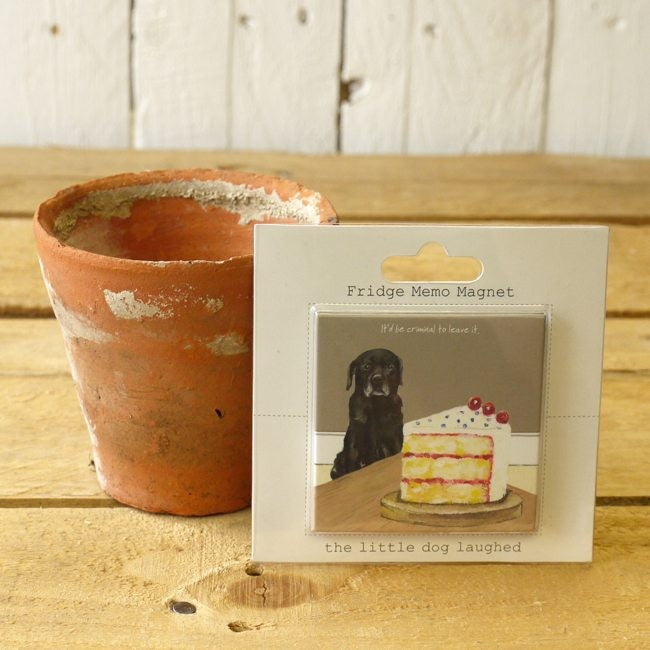 fridge magnet featuring black Labrador eyeing up some cake. Magnet leaning up against plant pot on wooden bench
