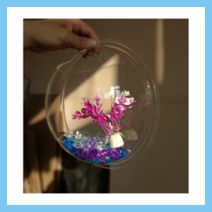 Wall-Mounted Fish Bowl