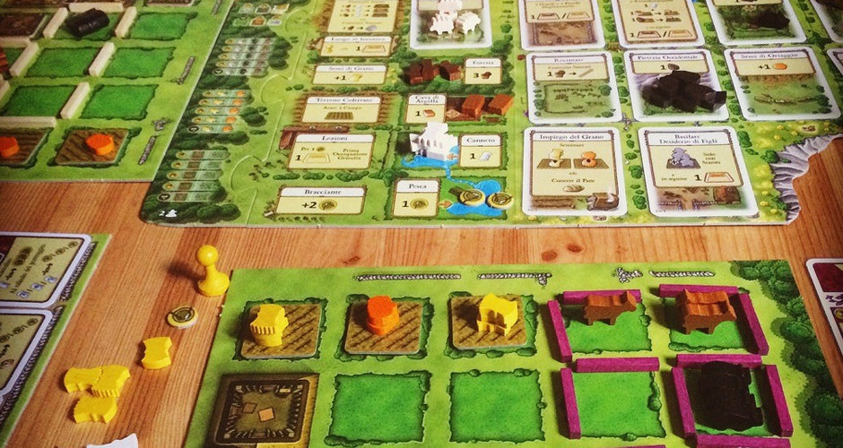 Agricola Board Game Gameplay