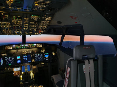 Boeing 737 Flight Simulator Experience