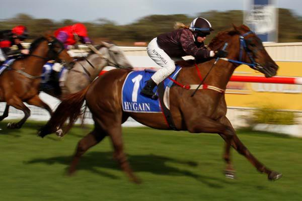 Energy requirements of a racehorse