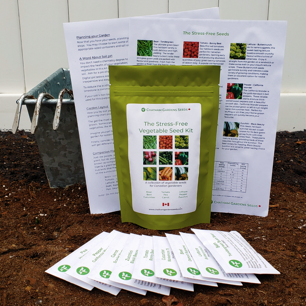 The Stress-Free Vegetable Seed Kit