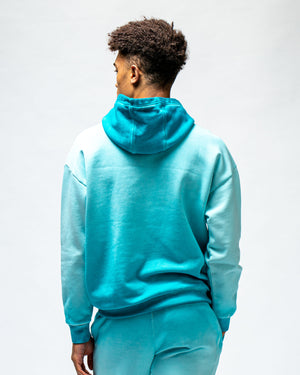 Load image into Gallery viewer, Aire_Libre_Ave_Bleach_Spray_Hoodie_Blue_Bird