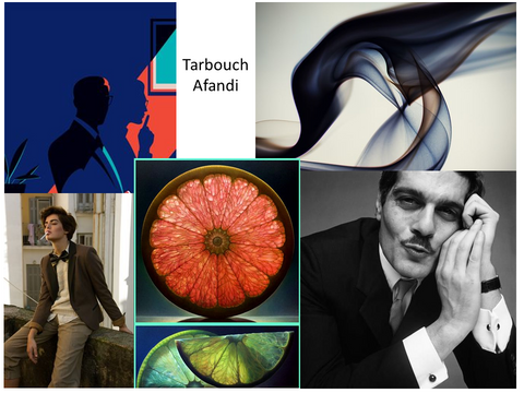 Mood Board Tarbouch Afandi