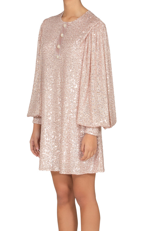 Rose Sequins Dress