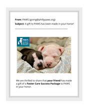 Load image into Gallery viewer, Foster Care Success Package
