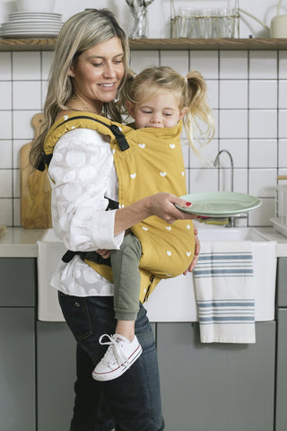 Play - Tula Preschool Carrier