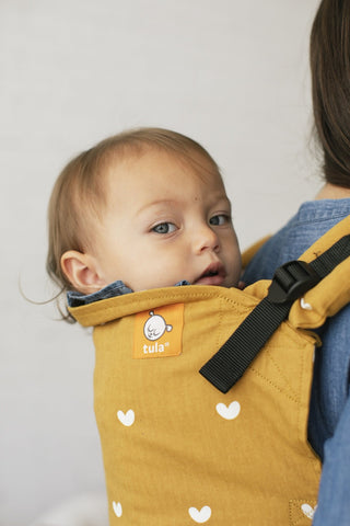 Play - Tula Standard Carrier