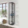 Single Black Glass Display Cabinet