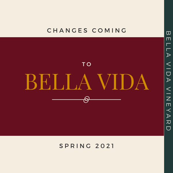 The Changes Ahead in Spring 2021