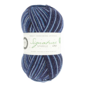 WYS Signature 4 Ply Christmas Colours - 906 Silent Night - Sparkle