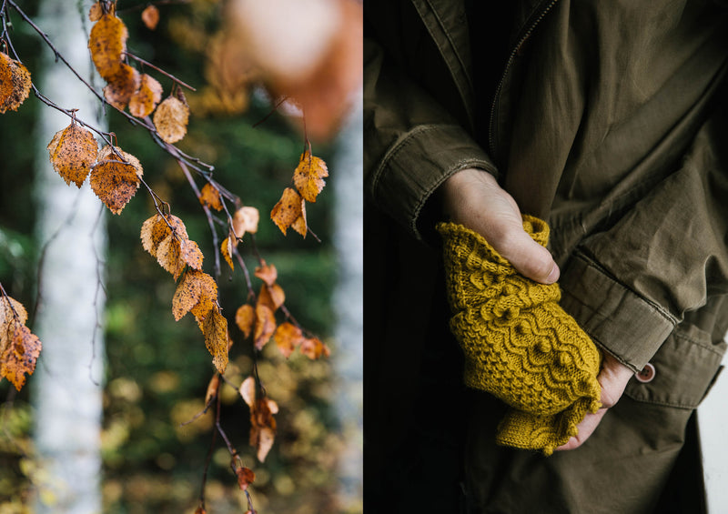 on the left, rust coloured fall leaves, on the right a mustard sock with texture and bobbles inspired by the fall leaves