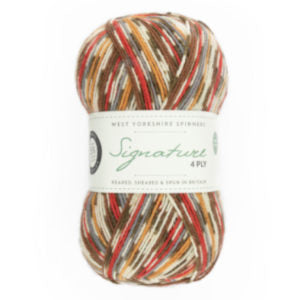 WYS Signature 4 Ply Christmas Colours - 941 Christmas Robin