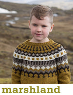 boy wearing a mustard knit sweater with a navy and cream colourwork yoke