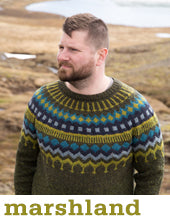 man wearing an olive green knit sweater with a yellow-green, blue, and turquoise patterned yoke
