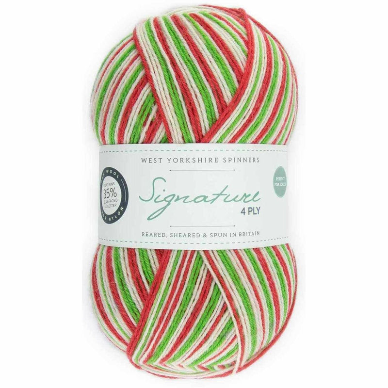 WYS Signature 4 ply Christmas Colours