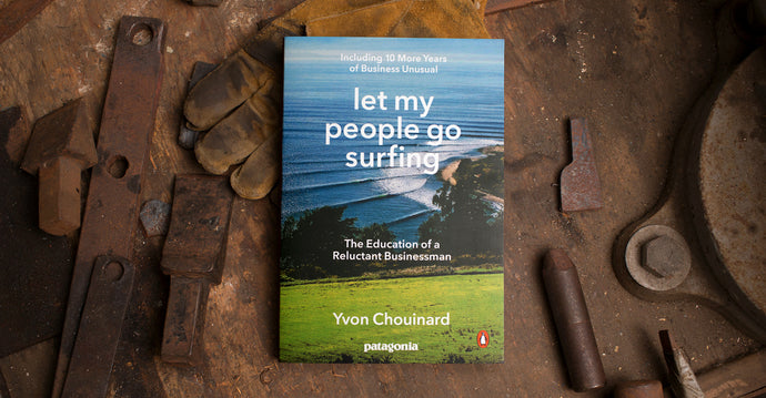 Boek: Let my people go surfing
