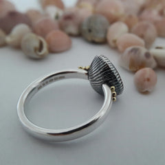 Cowrie Ring, Oxidised Silver (with 18ct Gold grains)