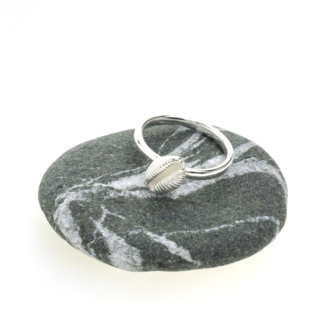 Cowrie Ring, Silver (Single shell)
