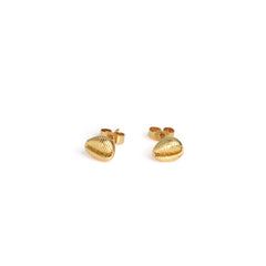 Cowrie Studs -  Solid 9ct Gold