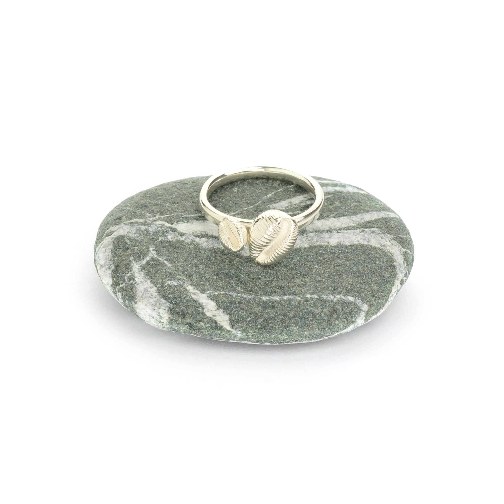 Cowrie Ring, Silver (2 shells)