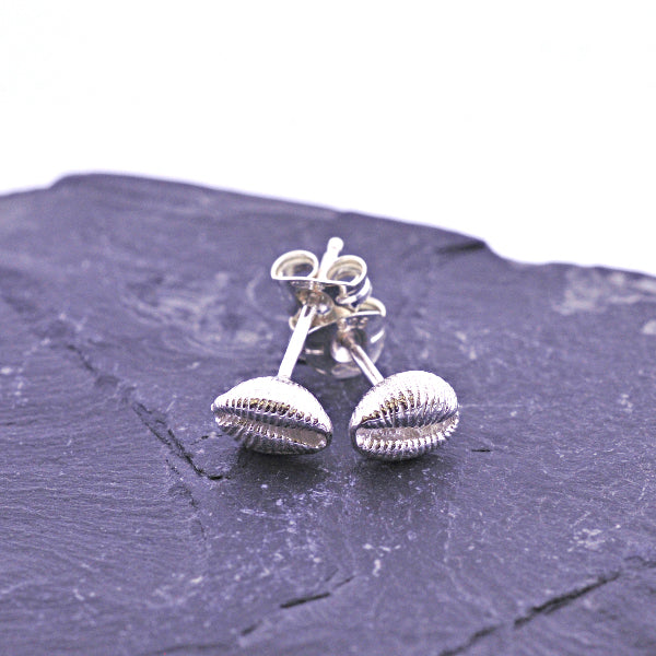 Cowrie Studs - Silver