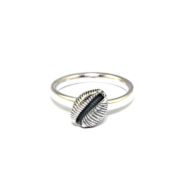 Cowrie Ring, Oxidised Silver (Single shell)