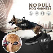 Load image into Gallery viewer, Body Safe Dog Harness