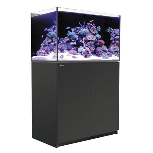 Red Sea REEFER  250 Black 65 gal