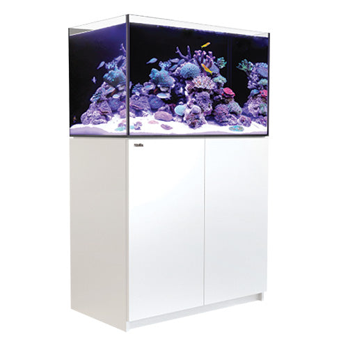 Red Sea REEFER  250 White 65 gal
